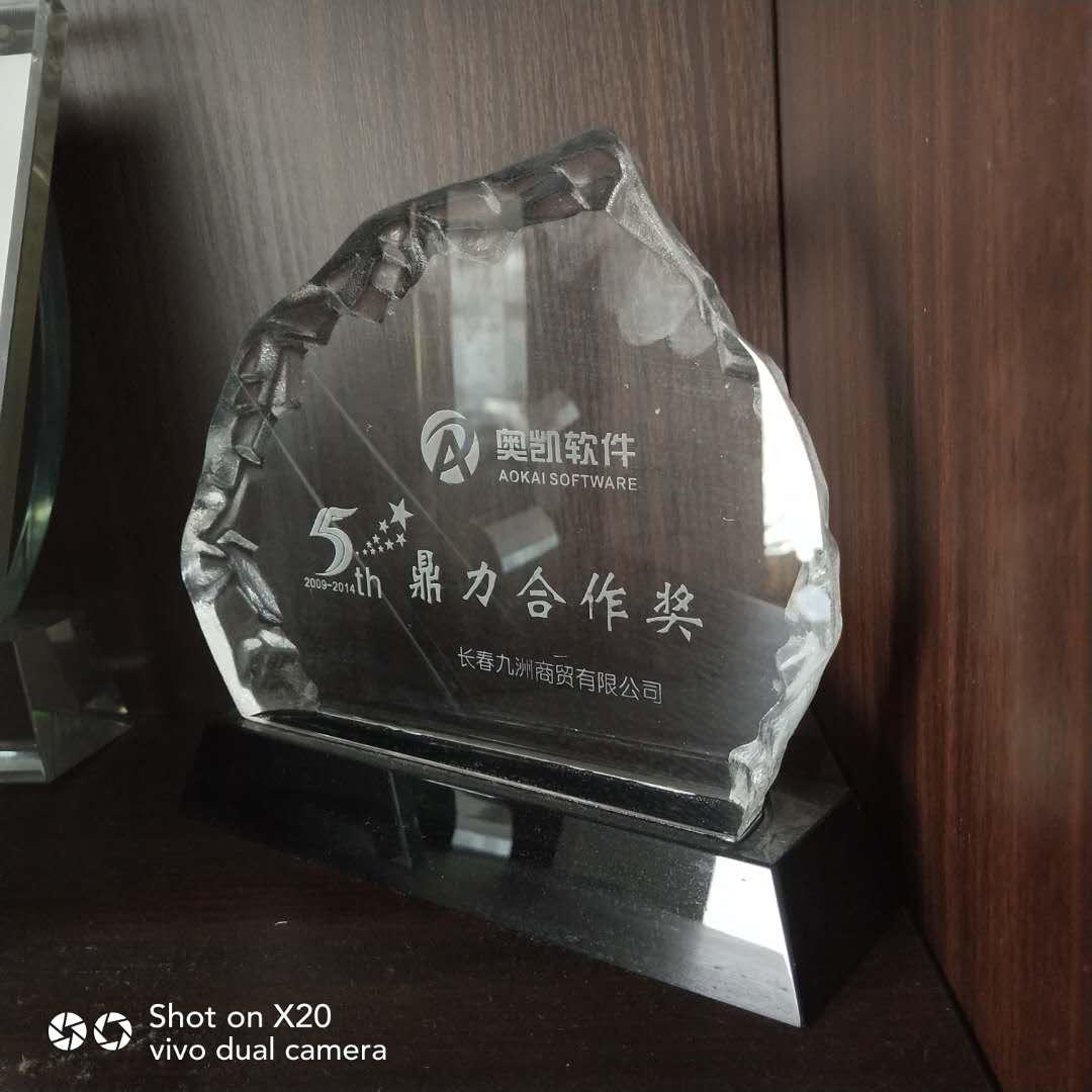 奥凯软件鼎力合作奖